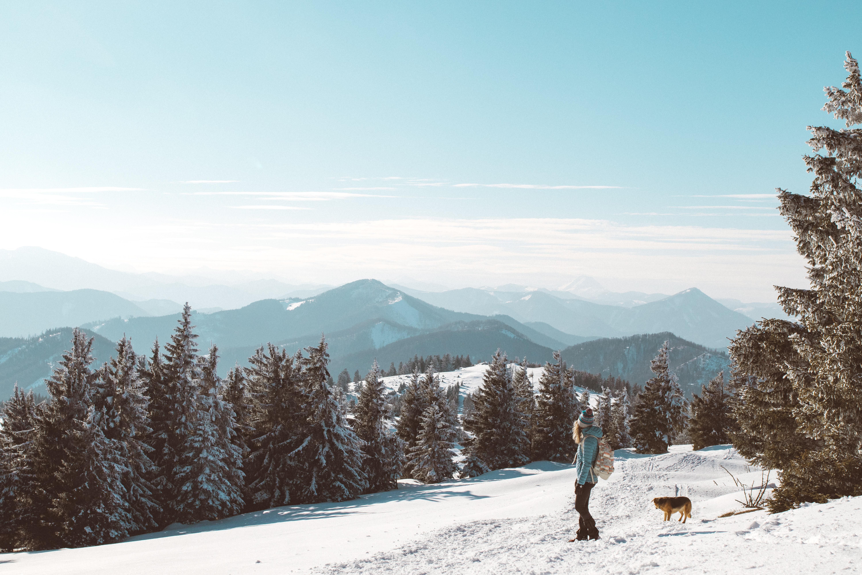 e9b4423bd851ce Wandern im Winter kann wirklich wunderschön sein – vorausgesetzt es gibt  Schnee. Durch die Kälte im matschigen Wald stapfen hat meiner Meinung ja  eher wenig ...