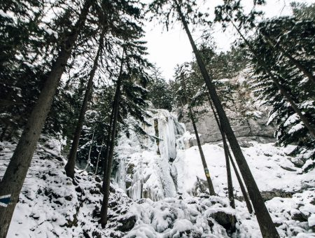 Wanderung zur Maumauwiese, Sebastian-Wasserfall (Tour 23;L)