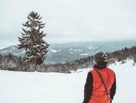 Wanderung zum großen Kitzberg (Tour 10; L)